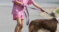girl_walking_dog