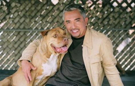 cesar_milan_with_dog