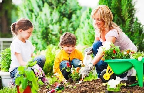 gardeningstory