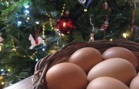 eggs-basket-and-christmas-t
