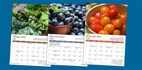 2013_foods