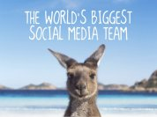 social_media_team_-_kangaroo