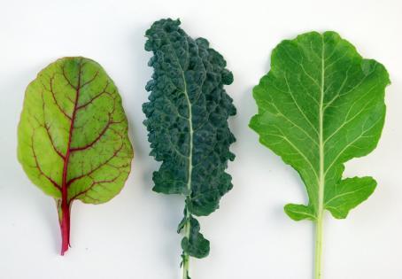 dark_leafy_greens