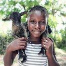 goat_gift