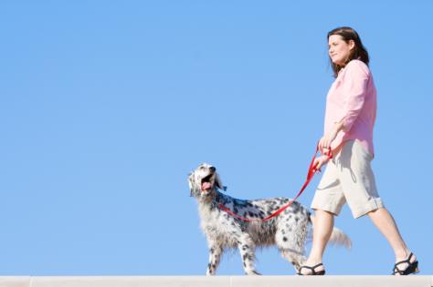 woman_walking_dog
