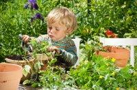 boy-garden