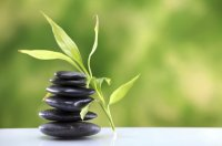 detox-leaf-stones