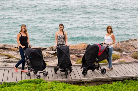 Fly babee stroller cover
