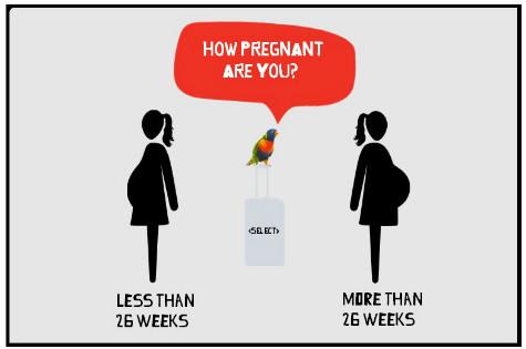 pregnancy travel insurance tool